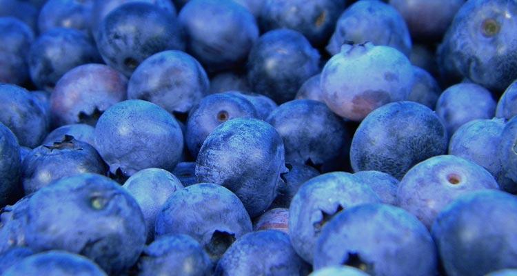 Makanan atau Buah Pencegah Penuaan Dini